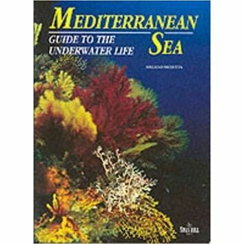 Mediterranean Sea - guide to the underwater life
