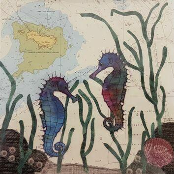 Hannah Wisdom Drakes Seahorse Card