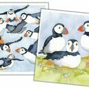 Emma Ball Puffins Mini Cards (Pack of 10) additional 1