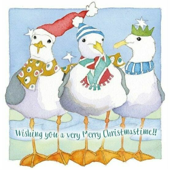 Emma Ball Festive Gulls Christmas Cards (Pack of 6)